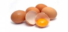 กินไข่อย่างไร ให้ลูกน้อยได้ประโยชน์เต็มๆ