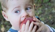 ลูกสำลักอาหาร เสี่ยงต่อโรคสมองตายจริงหรือ?