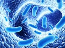 กุมารแพทย์ชี้ จุลินทรีย์โพรไบโอติกฯ  ช่วยบรรเทาอาการโคลิก-ปวดท้อง-ภูมิแพ้แก่เด็ก